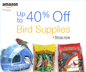 Up to 40% Off  Bird Supplies