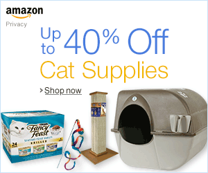 Up to 40% Off Cat Supplies